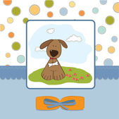 Greeting card with small dog — Stock Photo