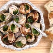 Stock Photo: Snails as french gourmet food