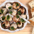 Snails as french gourmet food — Stock Photo