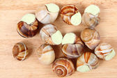 Snails as nice french gourmet food background — Stock Photo