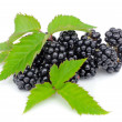 Stock Photo: Fresh berry blackberry with green leaf isolated on white background