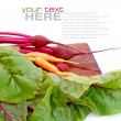 Fresh beet roots and carrot on a white background — Stock Photo