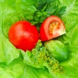 Fresh tomatoes and greenery on green salad — Stock Photo #7337658