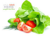 Fresh vegetables and green salad isolated on white background — Stockfoto
