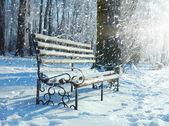 Banc dans le parc couvert de neige — Photo