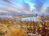 Frosted autumn meadow at dawn — Stock Photo