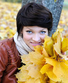 Girl in autumn with maple leaves — Photo