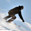The Skier — Foto Stock