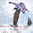 The Skier — Stock Photo