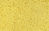 Yellow sponge texture — Stock Photo