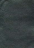 Leather texture for background — Stock Photo