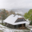 Stock Photo: First autumn sudden snow