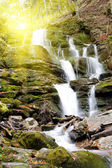 Waterfall in forest — Foto Stock