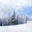 Beautiful winter landscape with snow covered trees — Stock Photo