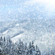 Winter trees in mountains covered with fresh snow — Zdjęcie stockowe #7342056