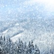 Winter trees in mountains covered with fresh snow — Stockfoto #7342056