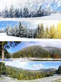 Piękne zimowe kolaż — Zdjęcie stockowe