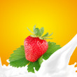 Splashing milk with strawberry — Stock Photo