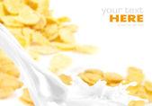 Salpicaduras de leche sobre fondo de copos de maíz — Foto de Stock