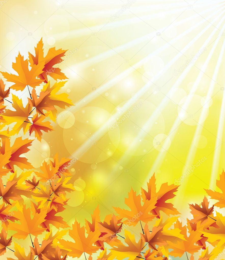 Autumn picture with the bright rays of a sun — Stock Photo #6908315