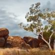 Devils marbles Australia — Stock Photo #7616080