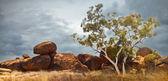 Devils marbles Australia — Stock Photo