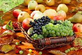 Basket of fruits. — Stock Photo