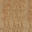 Stock Photo: Old wood plank board background