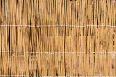 Cane texture — Stock Photo