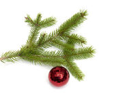 Xmas tree kugel hängt an einen weihnachtsbaum zweig, isoliert — Stockfoto