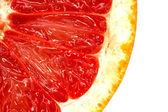 Red grapefruit close-up macro shot — Stock Photo