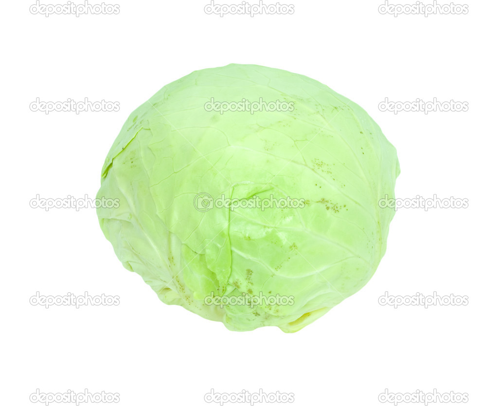 Green cabbage isolated on white background.  — Stock Photo #6864207