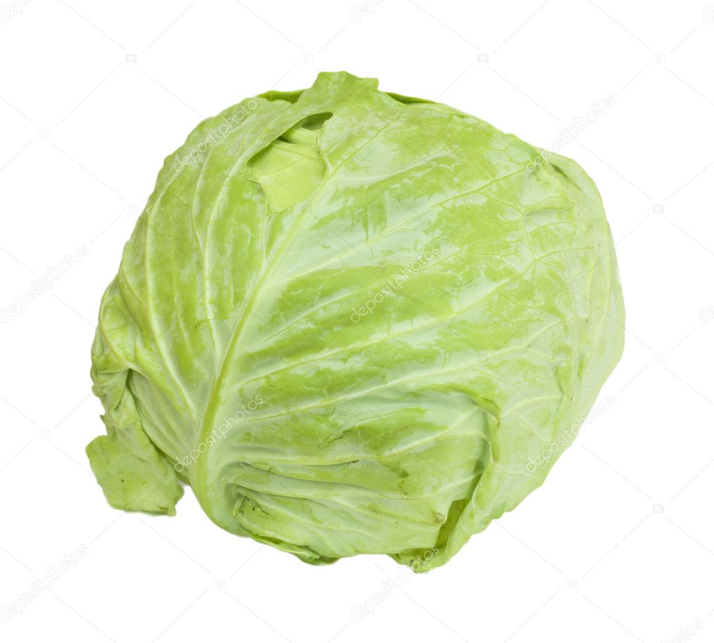 Cabbage isolated on a white background — Stok fotoğraf #6865765