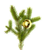 Xmas tree ball hanging on a Christmas tree branch, isolated — Stock Photo