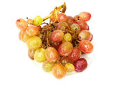 Fresh grape — Stock Photo