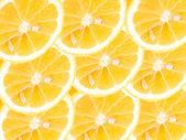 Cytryna — Zdjęcie stockowe