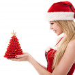 Young woman dressed as Santa Claus holds a Christmas gift in han - Stock Photo