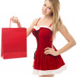 Portrait of a Christmas woman in santa hat holding a shopping ba — Stock Photo