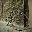 Old bicycle — Stock Photo #7259793