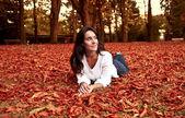 Autumn — Stockfoto