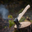 Old type of axe on log — Stockfoto