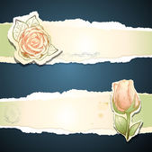 Vintage banners with roses, vector — Stock Vector