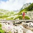 Wombackpacker in Great Cold Valley, Vysoke Tatry (High Tatras — Stock Photo #6763466