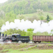 Steam freight train (126.014), Resavica, Serbia - Stock Photo