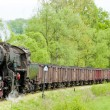 Steam freight train in Tuzla region, Bosnia and Hercegovina — Stock Photo