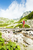 Woman backpacker in Great Cold Valley, Vysoke Tatry (High Tatras — Stock Photo