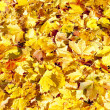 Photo: Autumnal leaves