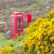 Telephone booth and letter box — Stock Photo #6772780