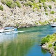 Cruise ships in Douro Valley — Stock Photo