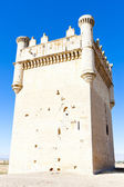 Castle of Belmonte de Campos — Stock Photo